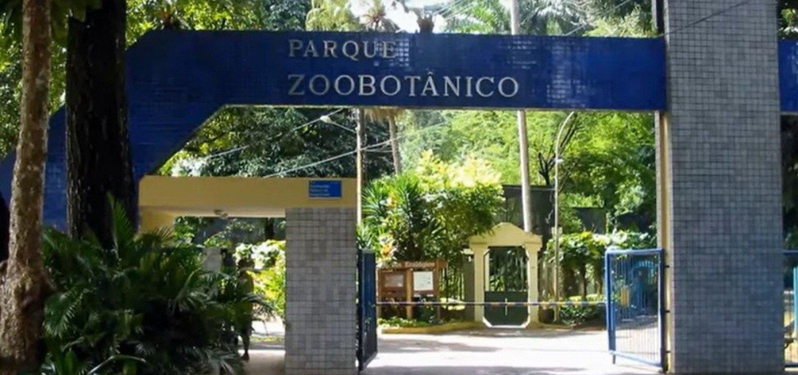 [Ambulantes protestam por reabertura de Zoológico em Salvador ]