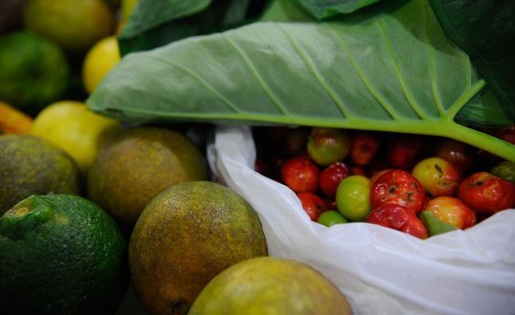 [ONU: 931 milhões de toneladas de alimentos foram para o lixo em 2019 ]