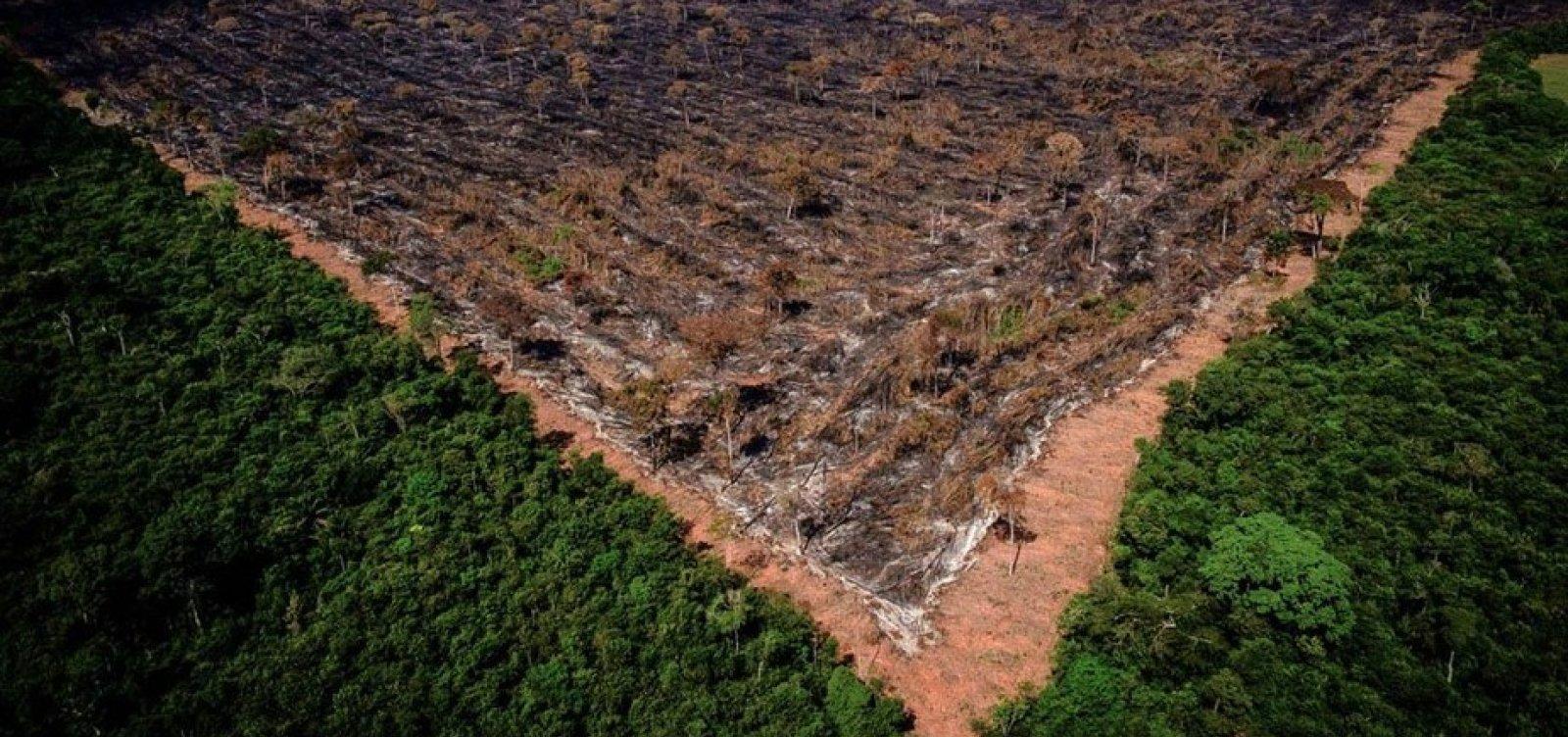 [Ministro do Meio Ambiente busca US$1 bilhão em ajuda externa para conter desmatamento na Amazônia]