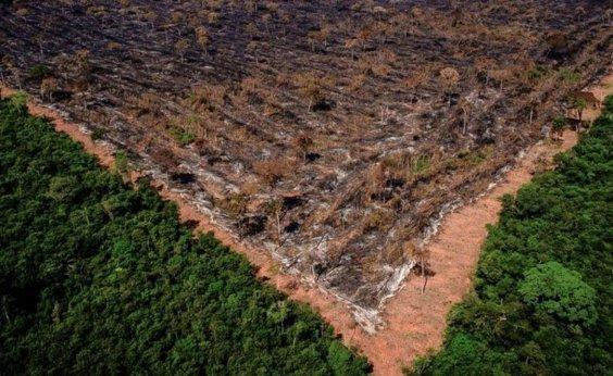 [Em março, desmatamento na Amazônia bate recorde e é o maior dos últimos seis anos ]