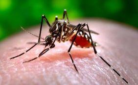[Mortes registradas na Bahia por chikungunya ocorreram em Jaguarari e Itiúba]