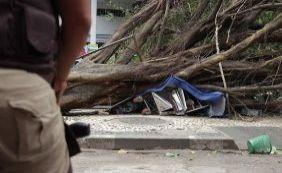 [Mulher morre após árvore cair nas proximidades da Avenida Tancredo Neves]