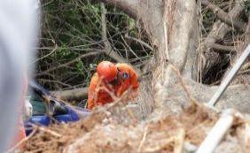 [Após acidente, Seman passa a podar árvores na Tancredo Neves]