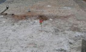 [Morador faz homenagem a idosa morta e coloca flor na Tancredo Neves]