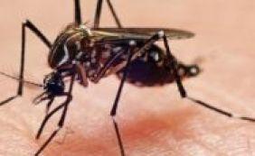 [Governo americano confirma três novos casos de Zika no Texas]