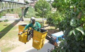 [Cerca de cinco mil árvores recebem limpeza preventiva no Carnaval]