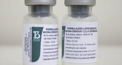 Vacina contra dengue entra na última fase de testes antes de avaliação da Anvisa