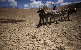 [Seca: mais oito cidades baianas estão em situação de emergência]
