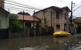 [Forte chuva em São Paulo deixa 15 mortos ]