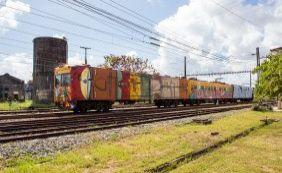 [Trens do Subúrbio são coloridos com obras dos paulistanos Os Gêmeos; veja]