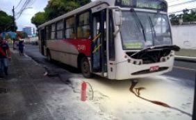 [Fogo atinge ônibus na Av. Joana Angélica; ninguém ficou ferido ]
