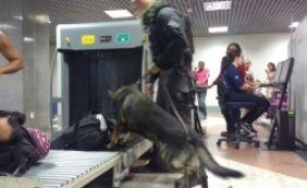 [Força-tarefa impede entrada de armas e drogas pelo aeroporto de Salvador]