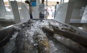 [Intoxicação após ingestão de peixe é causa de doença misteriosa, indica estudo]