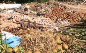 [Moradores denunciam lixo acumulado em Abrantes: '21 anos convivendo com isso']