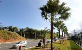 [Linha 2 do Metrô ganha área verde; 50 palmeiras são plantadas neste domingo]