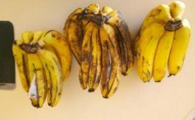 [Cachos de bananas com maconha são apreendidos; droga seria entregue a detento]
