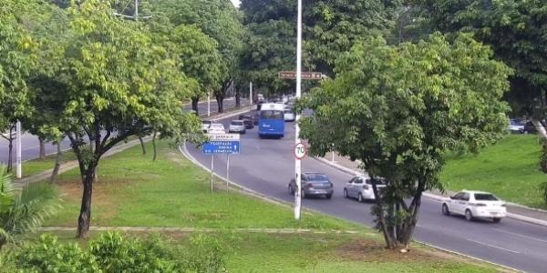 [Após poda de árvore e remoção de carro, trânsito volta a fluir na Av. Garibaldi]