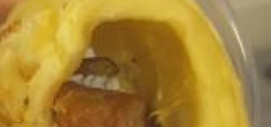 [Barata é encontrada dentro de salgado na Perini da Pituba; veja ]