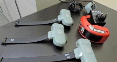 Governo prevê para agosto chegada de 300 tornozeleiras alugadas com custo unitário mensal de R$ 250