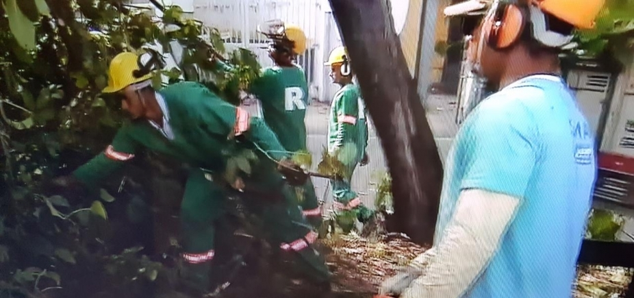 [Árvore cai no bairro do Stiep e complica trânsito]
