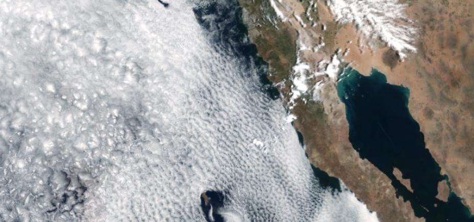 [Sobe para 35 número de mortos no México após terremoto]
