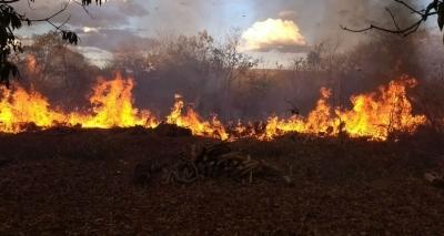 Incêndio atinge vegetação em Barreiras