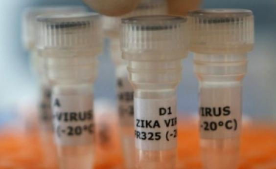 Ainda em fase de estudos, vacina contra zika vírus pode prevenir transmissão na gravidez