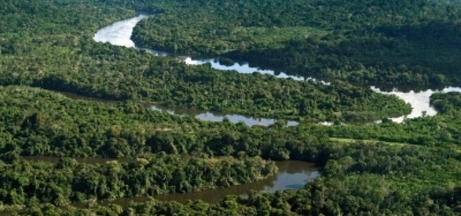[Governo vai revogar decreto que extinguia Reserva Nacional na Amazônia]