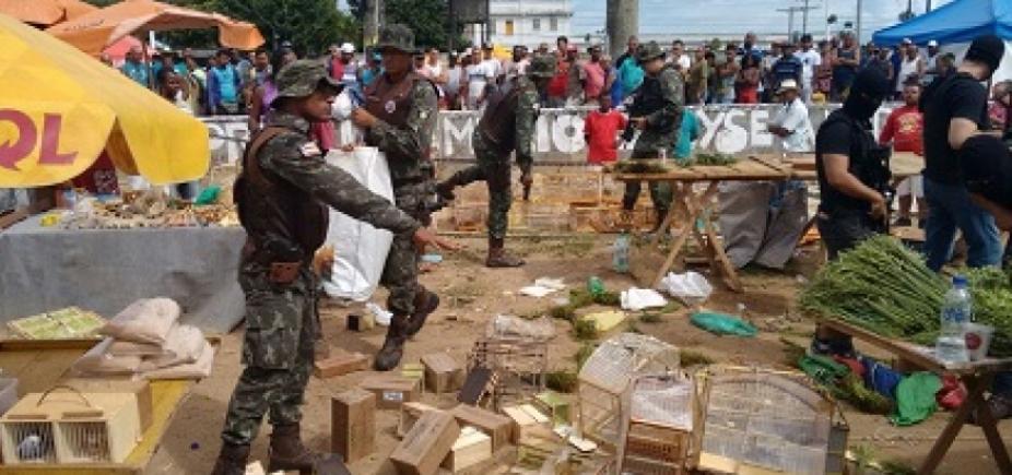 [Operação da Polícia Militar prende 10 homens por comércio ilegal de aves]