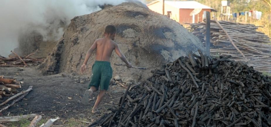 [Trabalho infantil: 118 crianças são resgatadas de coleta de dejetos, aterro sanitário e carvoarias]
