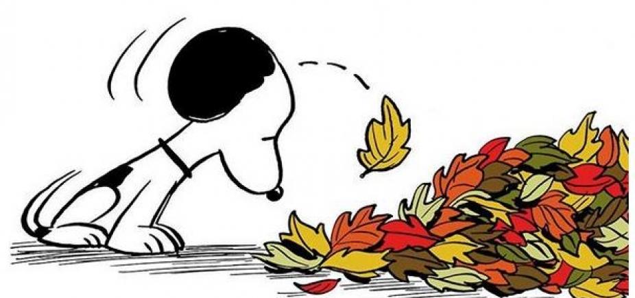[Casa do criador do Snoopy é destruída por incêndio florestal; relíquias do trabalho foram perdidas]