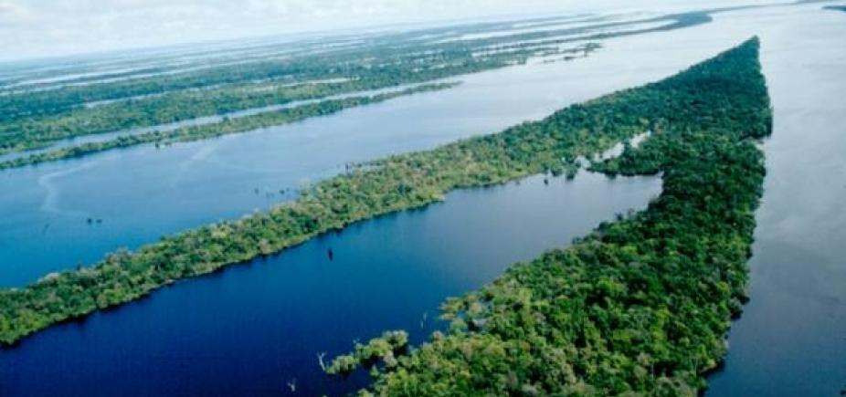 [Avião do Greenpeace cai no Amazonas e deixa um morto e quatro feridos]