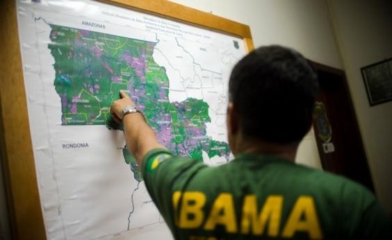 Temer decreta anistia a multas do Ibama em até 60%