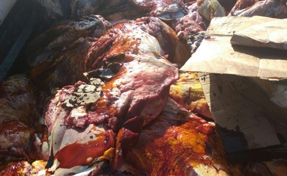 Mais de uma tonelada de carnes adulteradas é apreendida no Recôncavo