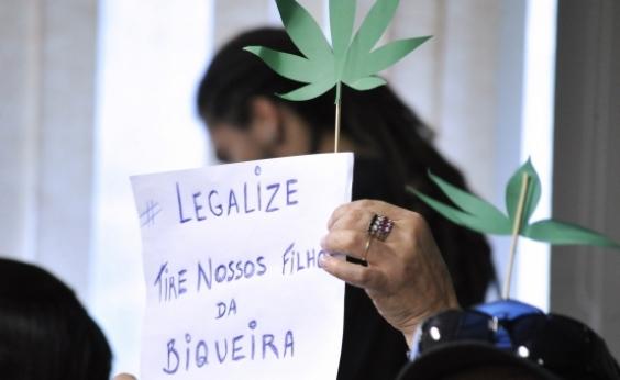 Pedido para produção de maconha medicinal é negado por juíza