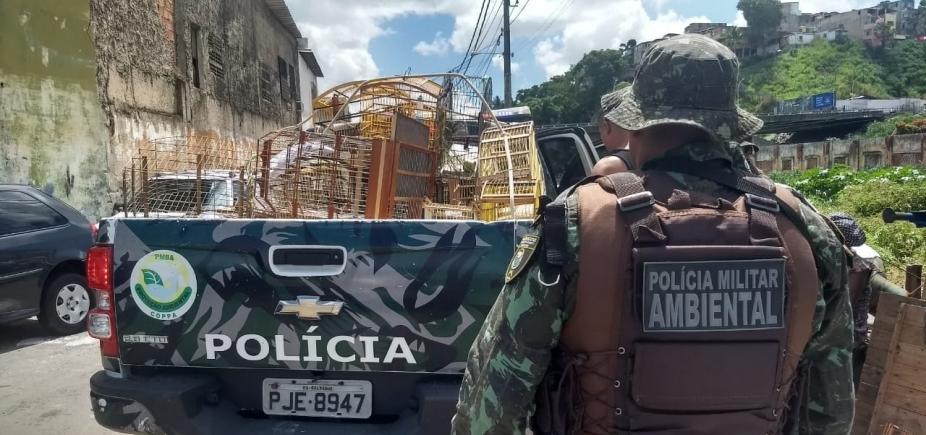 [Polícia prende 11 pessoas em comércio ilegal de animais na Baixa do Fiscal]