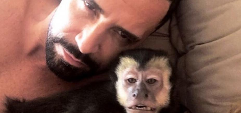 [Macaco de latino morre após ser atropelado no Rio de Janeiro]
