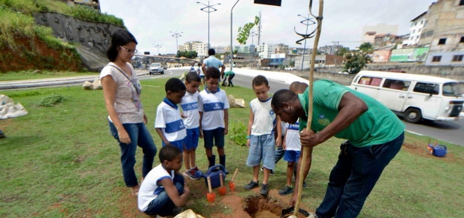 [Prefeitura começa a minimizar impactos ambientais do BRT com replantio de árvores]