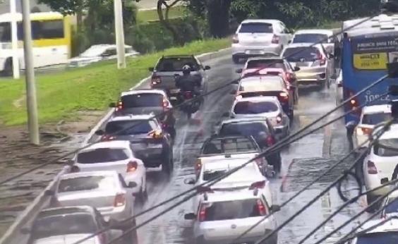 Exercite a paciência! Quedas de árvores e poste dificultam tráfego em Salvador