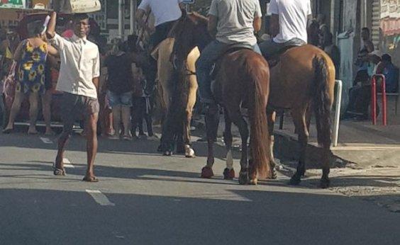 [Vereador faz festa do Dia do Trabalhador com cavalos em via pública]