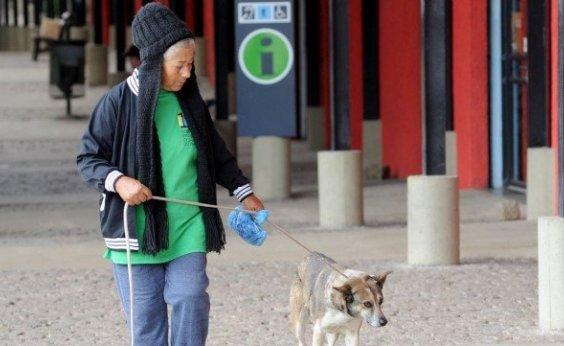 [STJ decide se animal doméstico é membro da família com direito a visita]