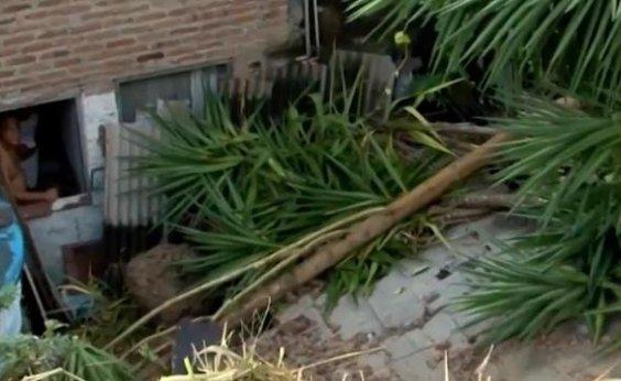 [Chuva causa prejuízos no sul da Bahia]