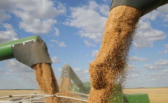 [IBGE estima queda de 5,3% na safra de grãos de 2018]