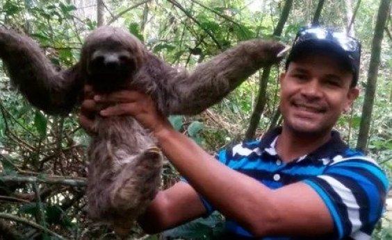 [Preguiça encontrada por morador no sul da Bahia é solta no Parque Nacional do Descobrimento]