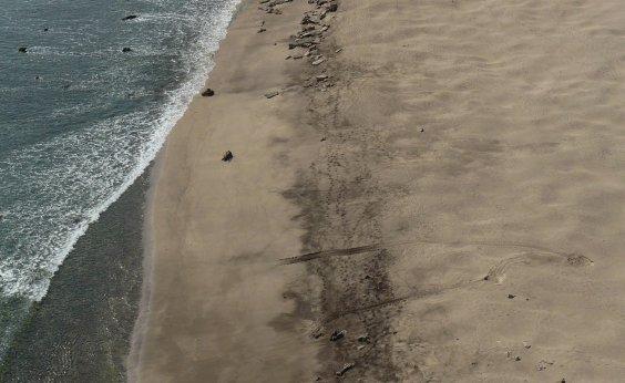 [Em uma semana, 17 tartarugas são achadas mortas na costa da Bahia]