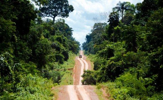 [Brasil perdeu 71 milhões de hectares de vegetação nativa em 30 anos]