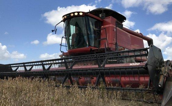 [Agricultura do país registra 1ª queda em 7 anos]