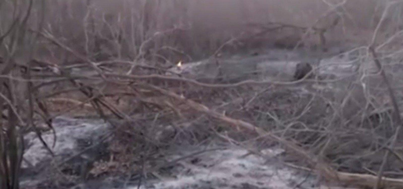 [Área de caatinga no norte da Bahia é atingida por incêndio há mais de 20 dias]