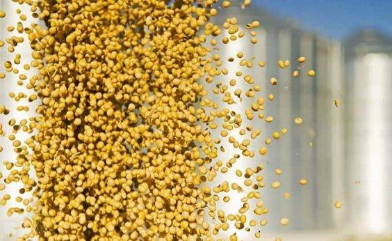 [Commodities aumentam participação nas exportações brasileiras, diz FGV]
