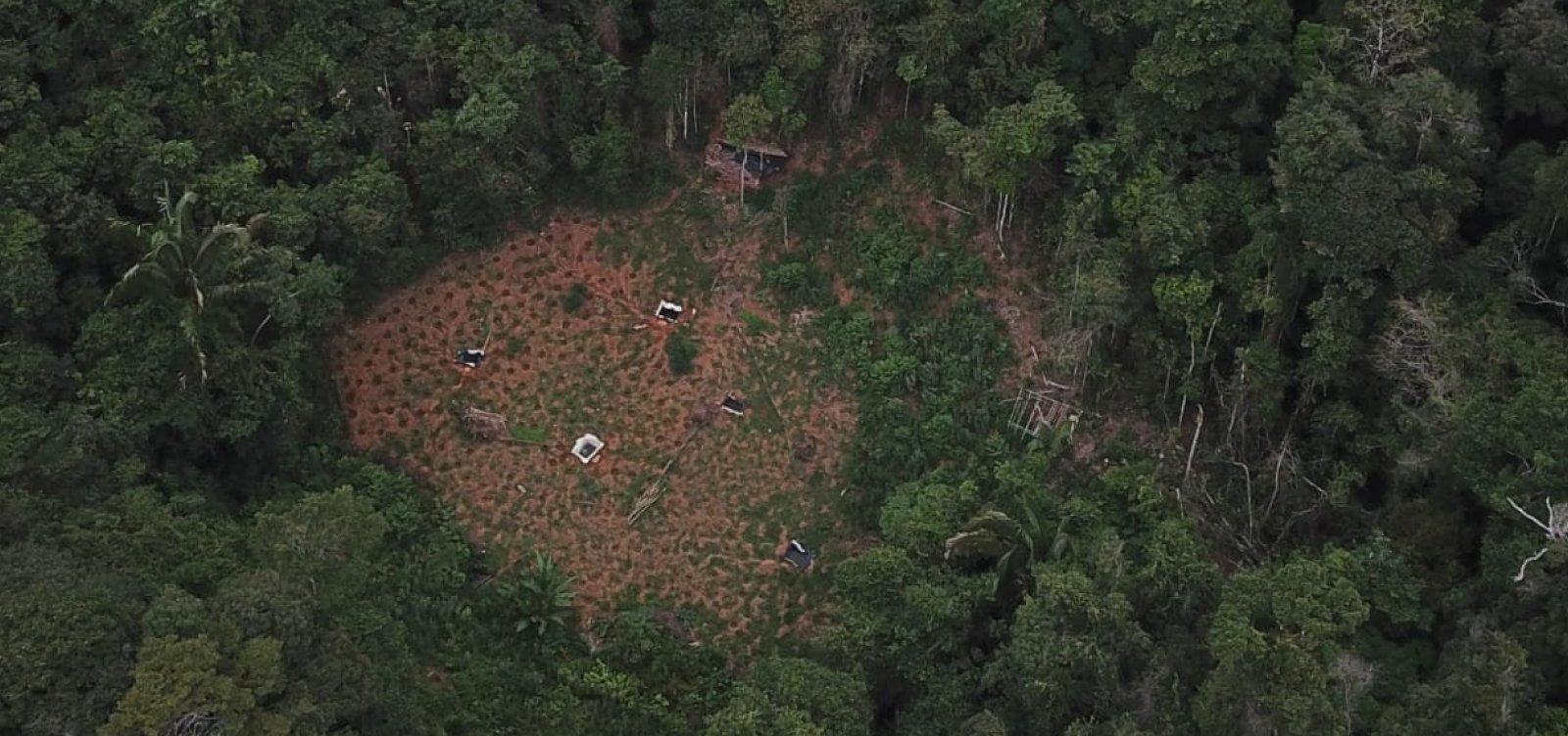 [Polícias usam drone e localizam cerca de quatro toneladas de maconha]